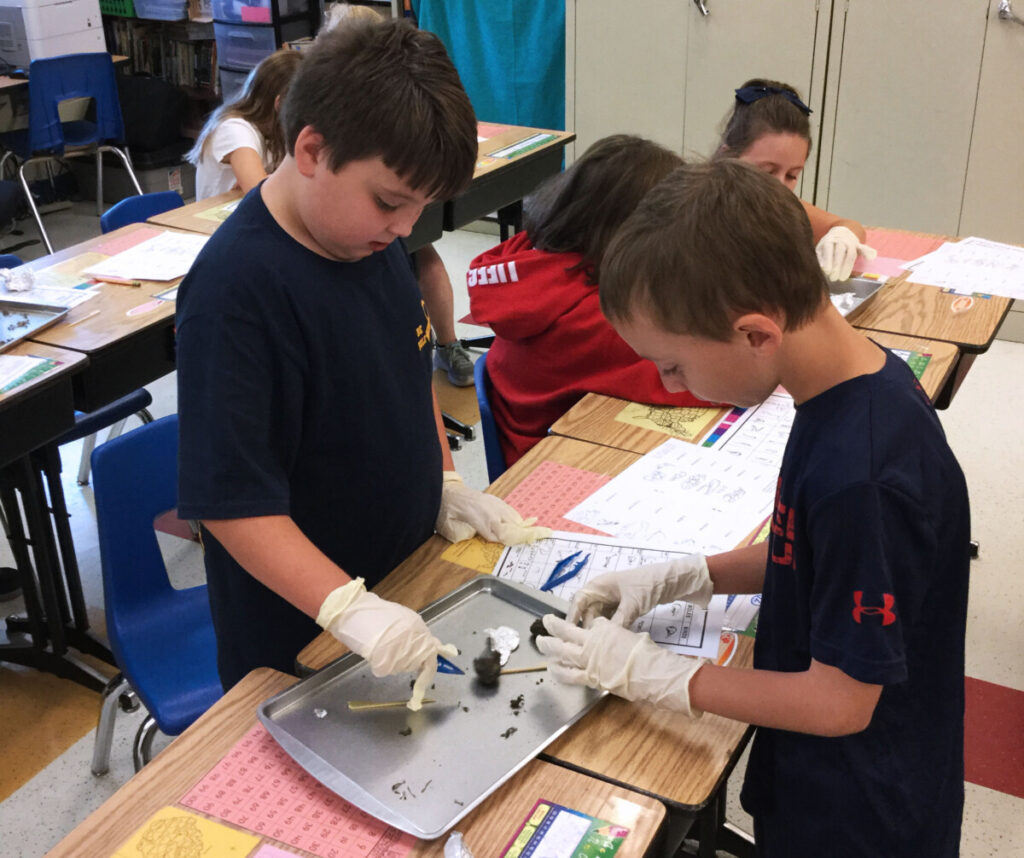 Pictured from left: Hilltop Elementary 3rd grade students Colsen McCutcheon and Julian Gardner have donned gloves and are using tweezers to examine what is in their owl pellets.