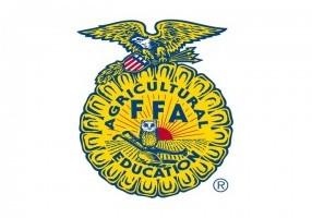 FFA WEB logo